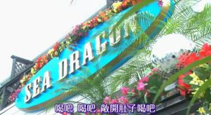 Sea Dragon (I sense an irony lying somewhere here, but nevermind)